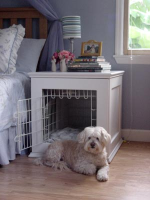 Cool creative way to design dog beds wooftalk for Cute dog room ideas