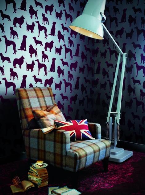 best in show wooftalk. Black Bedroom Furniture Sets. Home Design Ideas